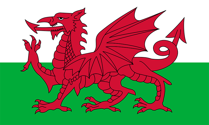 flag, Welsh, Wales, Red, Dragon, Different sizes, National, pride, printed, sewn
