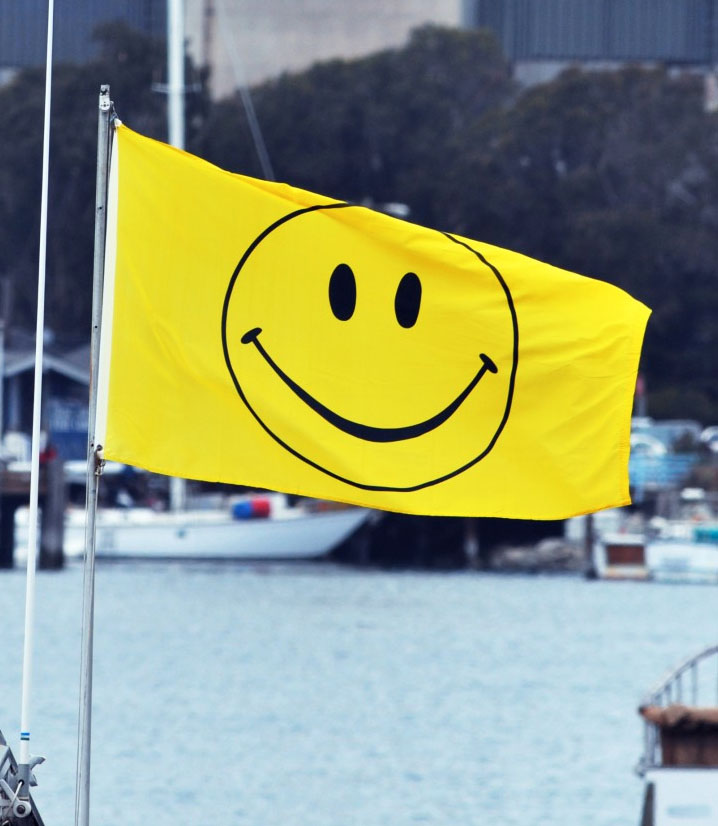 Smiley, happy, face, flag, printed, fun, yellow, bright, silly
