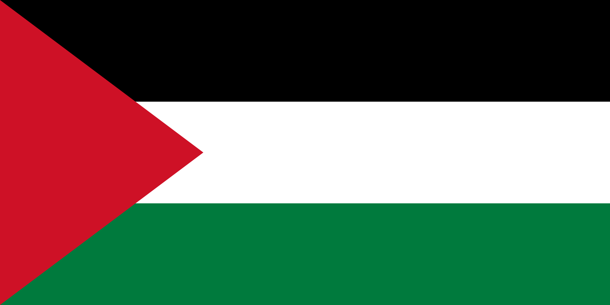 Palestine national, flag, sewn, national, flag, cheap, online