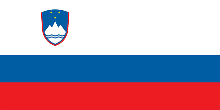 Slovenia national, flag, sewn, national, flag, cheap, online