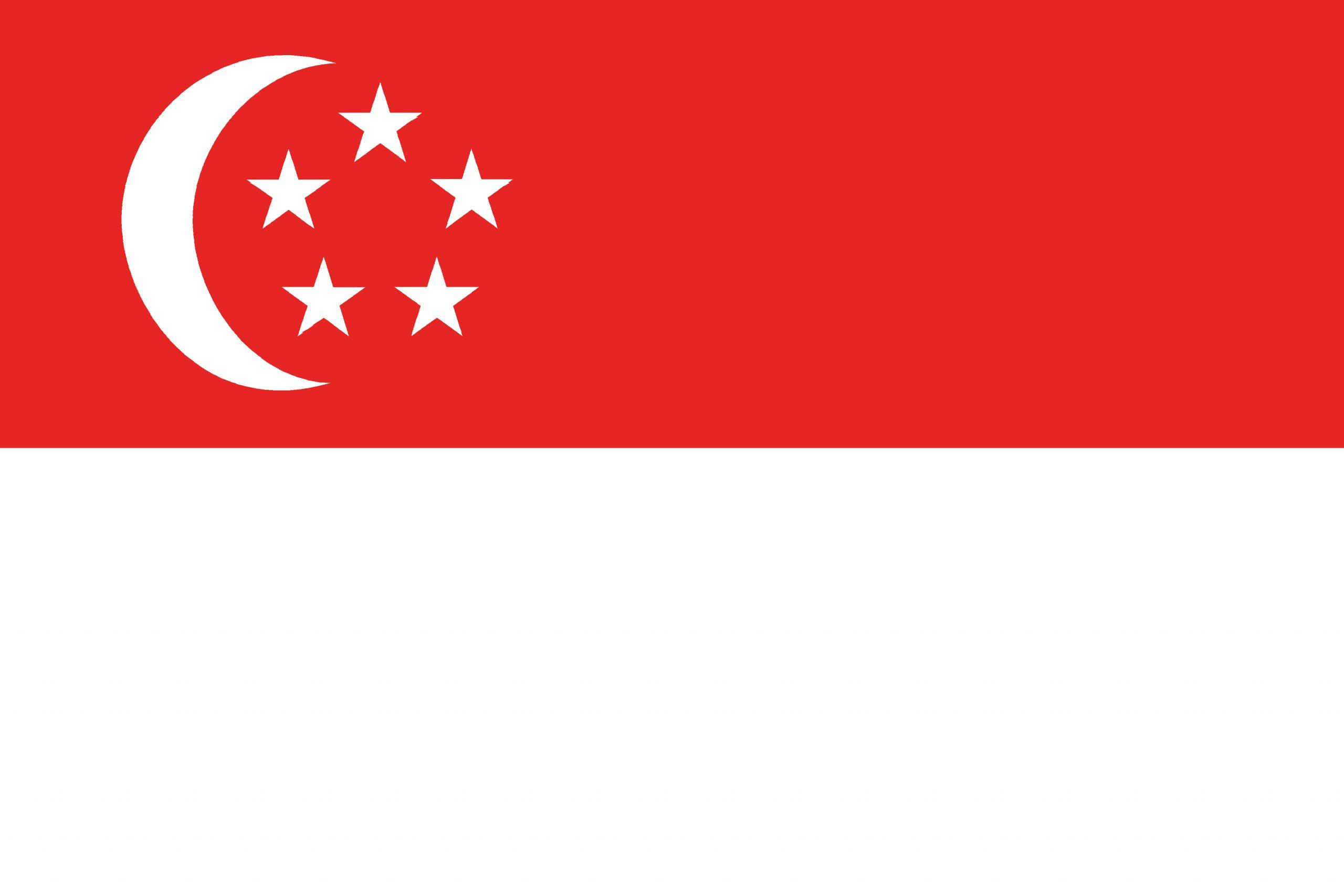Singapore national, flag, sewn, national, flag, cheap, online