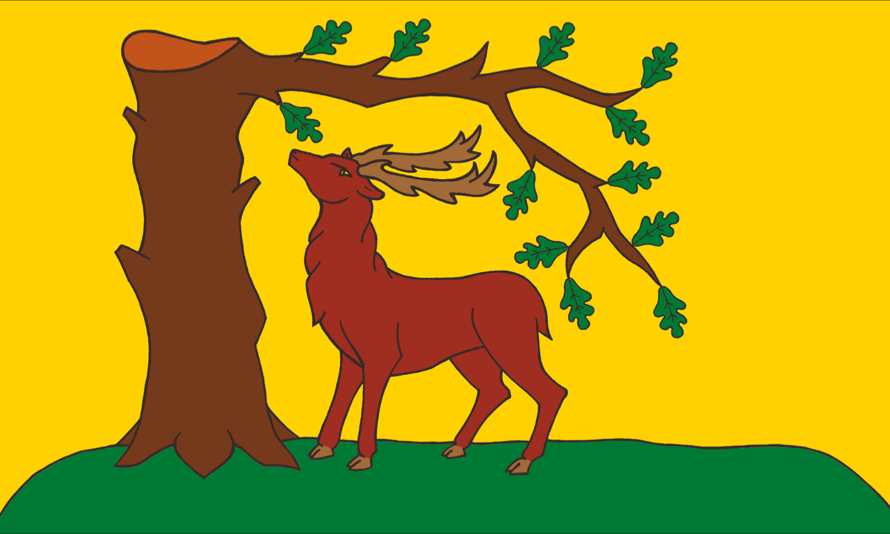 Berkshire County flag, printed, flag, county, event, cheap, online