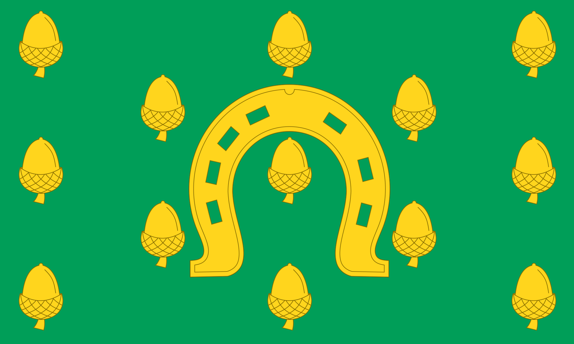 Rutland County flag, printed, flag, county, event, cheap, online