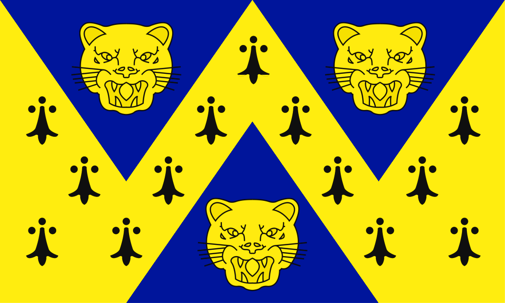 Shropshire County flag, printed, flag, county, event, cheap, online