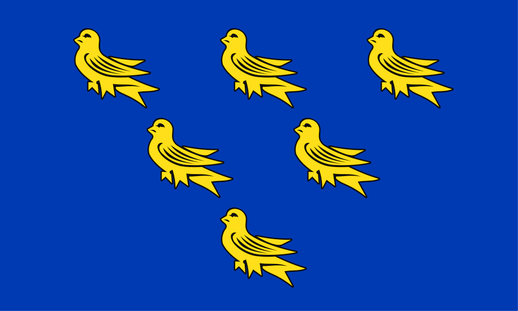 Sussex County flag, printed, flag, county, event, cheap, online