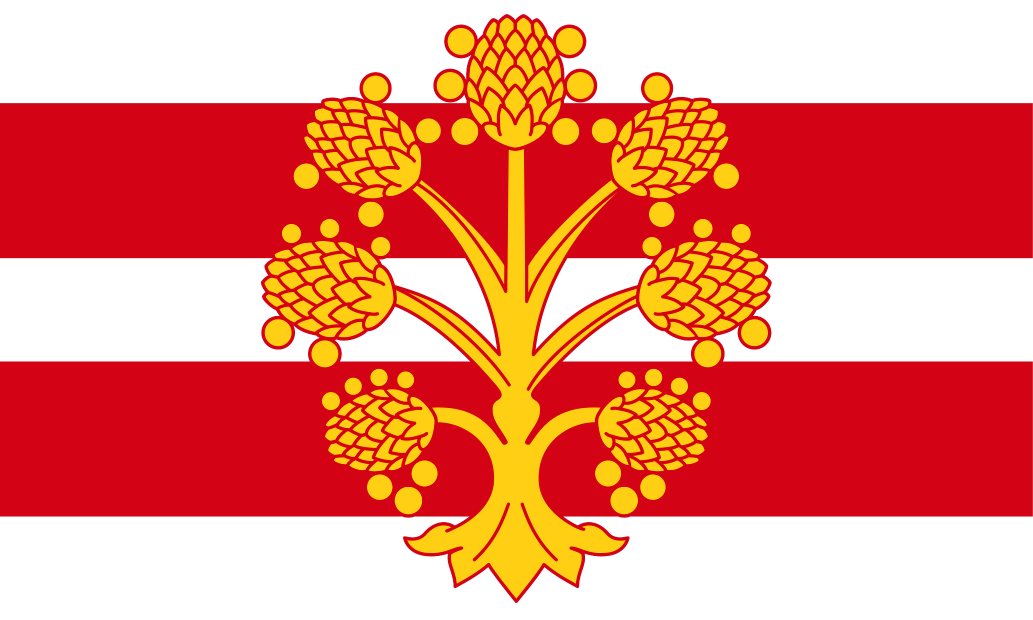 Westmorland County flag, printed, flag, county, event, cheap, online